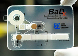 BaDx, the pocket-sized anthrax assay