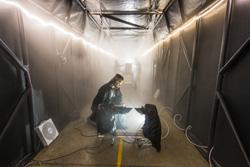 Sandia Labs fog chamber