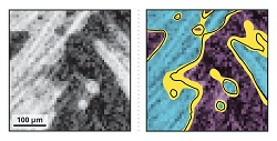 Graphic showing segmentation possibilities